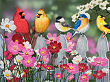 Songbirds and Cosmos Jigsaw Puzzle