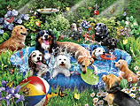 Splish Splash Jigsaw Puzzle